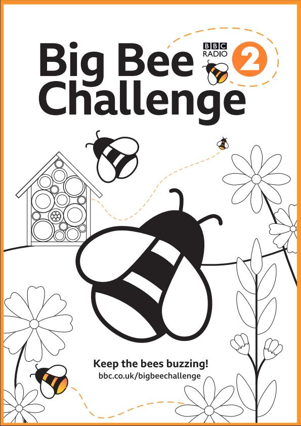 Big Bee Challenge Poster