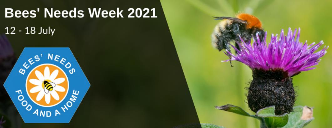 Bees Needs Week