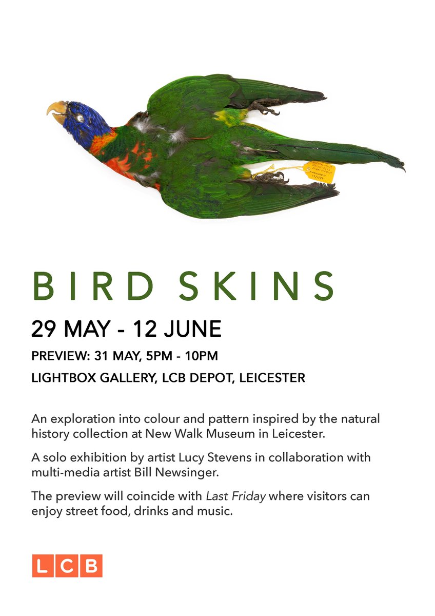 Bird Skins exhibition